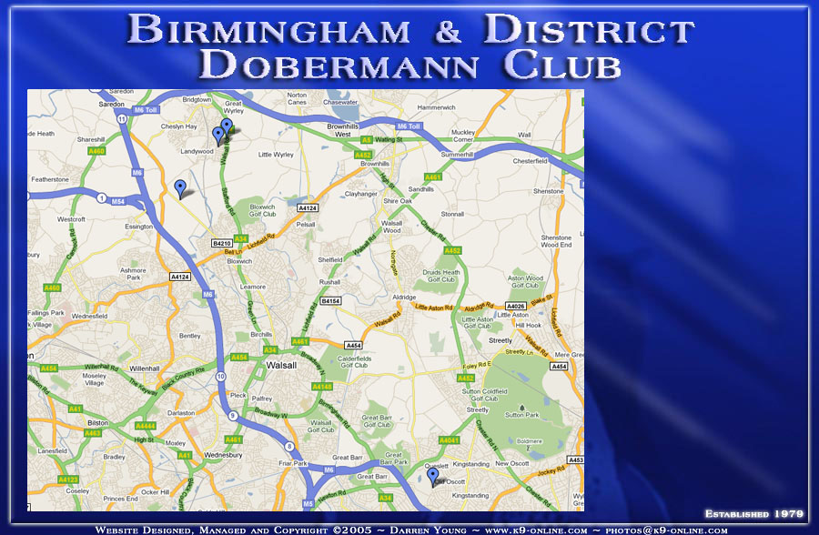 Birmingham Amp District Dobermann Club UK Home Page
